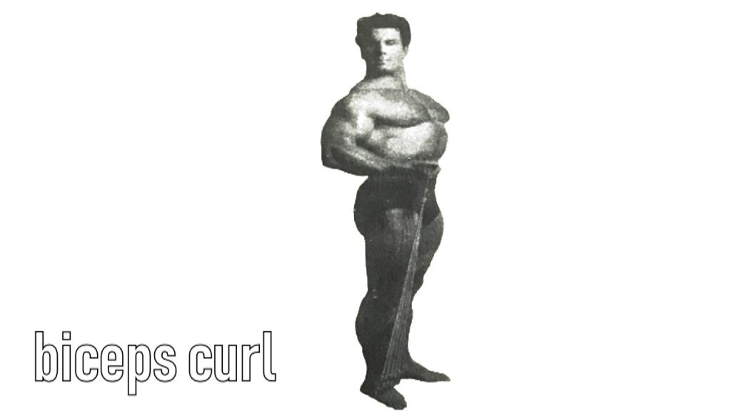 Reg Park Biceps curl