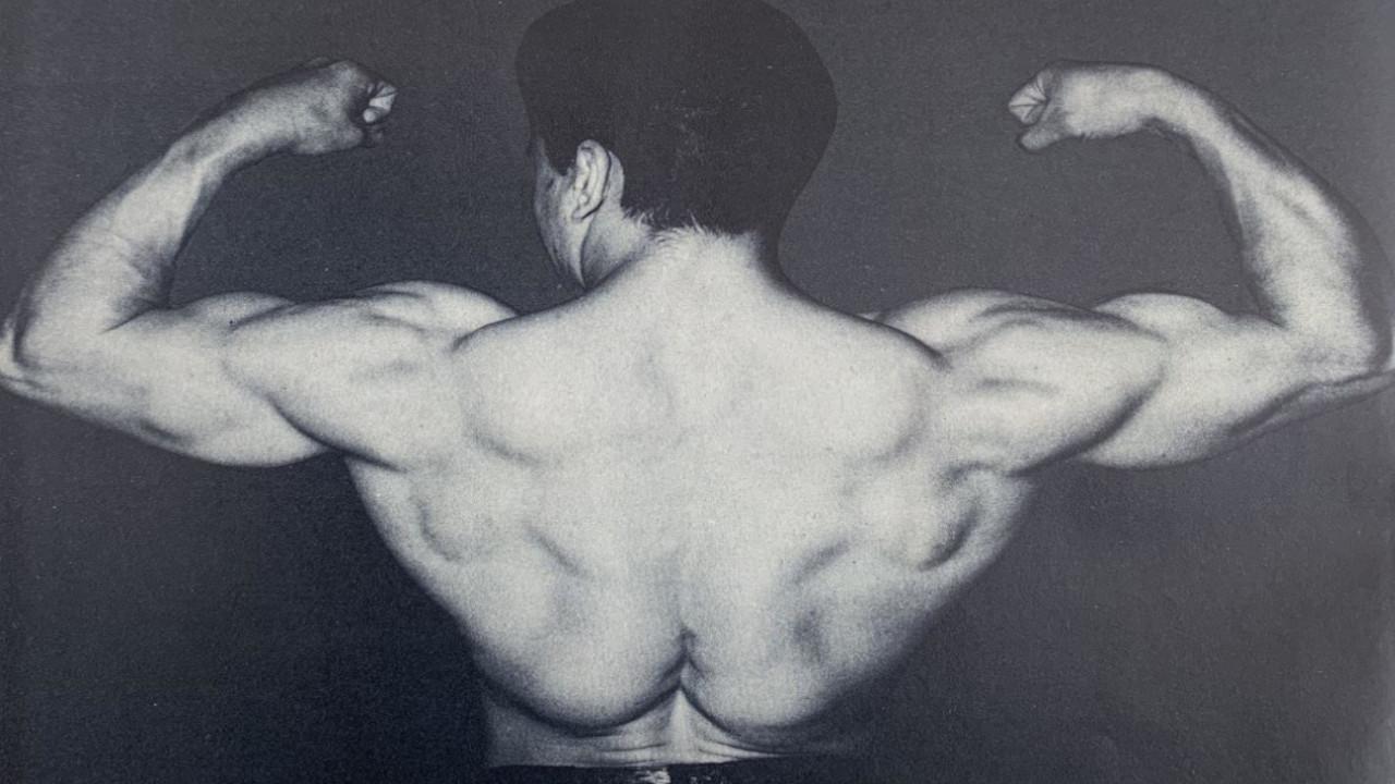 Chuck Vinci Weightlifting Training Routine