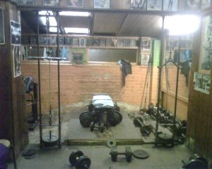 Wag Bennett's Gym