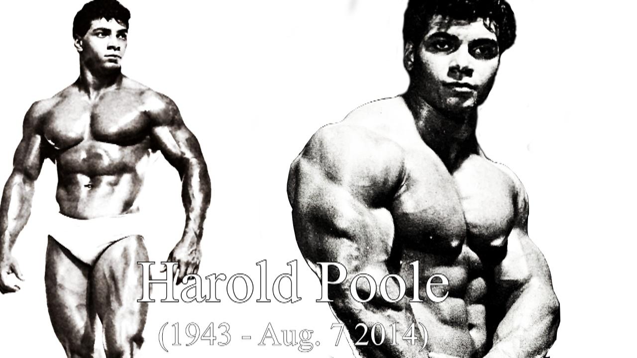 Harold Poole Bodybuilding