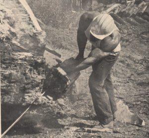 Chuck Sipes lumberjack