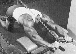 Larry Scott triceps extensions