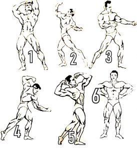 Bodybuilding Posing Routine chart Guide