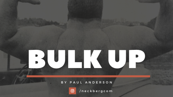 Bulk Up Routine beginners