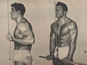 reg park triceps pushdown