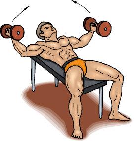 leo robert workout