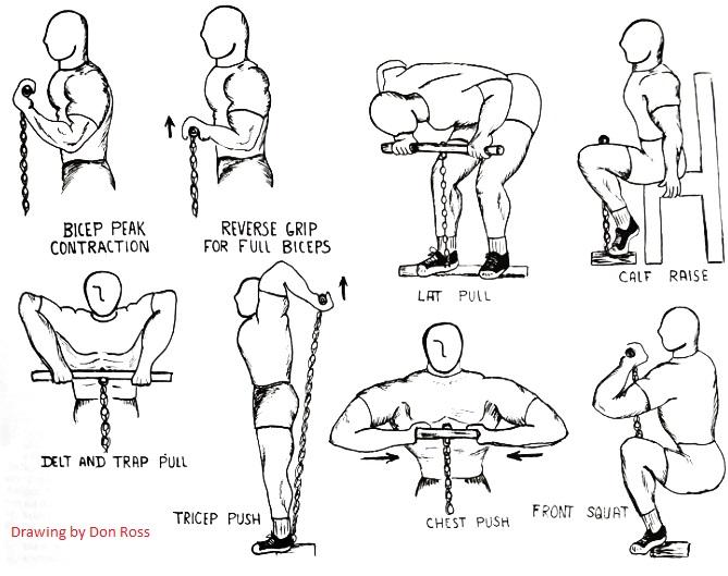 isometric training don ross bodybuilding