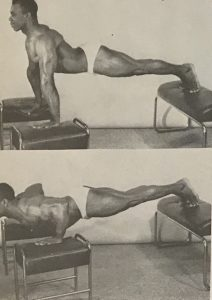 dips two benches bodybuilding